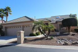 Photo of 24219 S Briar Wing Drive, Sun Lakes, AZ 85248 (MLS # 5705587)