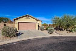 Photo of 10676 E Bluebird Mine Court, Gold Canyon, AZ 85118 (MLS # 5733373)