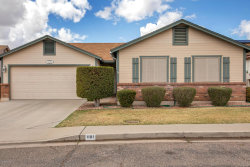 Photo of 6335 E Brown Road E, Unit 1181, Mesa, AZ 85205 (MLS # 5738299)