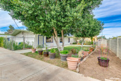 Photo of 1436 S Terrace Road, Tempe, AZ 85281 (MLS # 5738716)