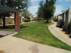 Photo of 9020 N 51st Lane, Glendale, AZ 85302 (MLS # 5769736)