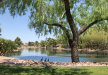 Photo of 852 E Las Colinas Place, Chandler, AZ 85249 (MLS # 5771058)