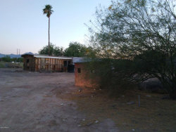 Photo of 3036 S 69th Drive, Phoenix, AZ 85043 (MLS # 5771557)