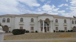Photo of 4010 E Leland Street, Mesa, AZ 85215 (MLS # 5784791)