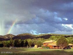 Photo of 49969 N Az Highway 288 Highway, Young, AZ 85554 (MLS # 5792822)