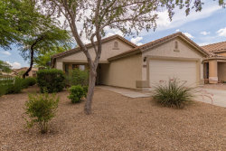 Photo of 323 E Senna Way, San Tan Valley, AZ 85143 (MLS # 5793805)