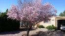 Photo of 120 E Aero Drive, Payson, AZ 85541 (MLS # 5799740)