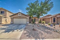 Photo of 29737 N Blackfoot Daisy Drive, San Tan Valley, AZ 85143 (MLS # 5807429)