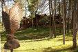 Photo of 158 S Thirteen Ranch Road, Payson, AZ 85541 (MLS # 5815927)