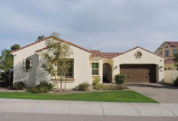 Photo of 3305 S Waterfront Drive, Chandler, AZ 85248 (MLS # 5833125)