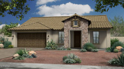 Photo of 10323 E Tillman Avenue, Mesa, AZ 85212 (MLS # 5847775)