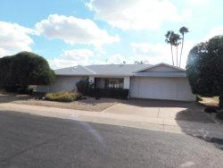 Photo of 10317 W Pine Springs Drive, Sun City, AZ 85373 (MLS # 5869388)