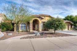 Photo of 15623 S 16th Street, Phoenix, AZ 85048 (MLS # 5883537)