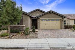 Photo of 261 E Home Improvement Way, Chandler, AZ 85249 (MLS # 5884590)