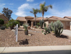 Photo of 24312 S Stoney Path Drive, Sun Lakes, AZ 85248 (MLS # 5899075)