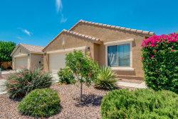 Photo of 958 W Desert Seasons Drive, San Tan Valley, AZ 85143 (MLS # 5939939)