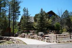 Photo of 591 W Homestead Lane, Christopher Creek, AZ 85541 (MLS # 5943963)