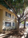 Photo of 2555 W Rose Lane, Unit A106, Phoenix, AZ 85017 (MLS # 5948634)