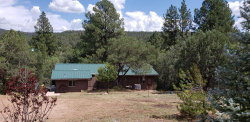 Photo of 125 S Creekside Lane, Young, AZ 85554 (MLS # 5971751)
