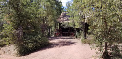 Photo of 5313 N White Tail Lane, Pine, AZ 85544 (MLS # 5971993)