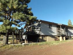 Photo of 291 High Point Drive, Mormon Lake, AZ 86038 (MLS # 5989194)