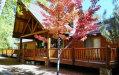 Photo of 138 S Wild Rose Drive, Payson, AZ 85541 (MLS # 5991630)