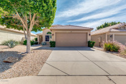Photo of 6717 E Norwood Street, Mesa, AZ 85215 (MLS # 5993197)