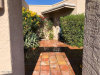Photo of 6514 E Mountain View Road, Paradise Valley, AZ 85253 (MLS # 6007907)