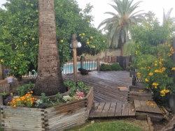 Photo of 10021 N 48th Lane, Glendale, AZ 85302 (MLS # 6008393)