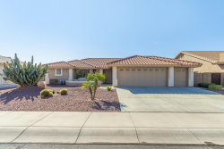 Photo of 11027 E Neville Avenue, Mesa, AZ 85209 (MLS # 6039207)