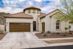 Photo of 519 E Pearce Road, Phoenix, AZ 85042 (MLS # 6040702)