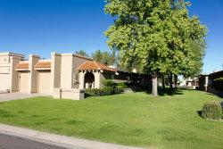 Photo of 25243 S Saddletree Drive, Sun Lakes, AZ 85248 (MLS # 6055290)