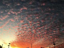 Photo of 5409 E Pinchot Avenue, Phoenix, AZ 85018 (MLS # 6091029)
