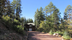 Photo of 415 E Rim Estates Trail, Payson, AZ 85541 (MLS # 6097403)