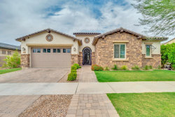 Photo of 4818 S Rhodium Lane, Mesa, AZ 85212 (MLS # 6102866)