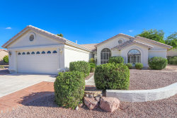 Photo of 9209 E Cedar Waxwing Drive, Chandler, AZ 85248 (MLS # 6114296)