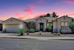 Photo of 11431 E Roselle Avenue, Mesa, AZ 85212 (MLS # 6138193)