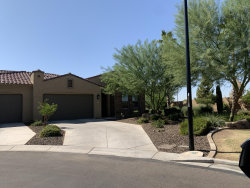 Photo of 16961 W Holly Street, Goodyear, AZ 85395 (MLS # 6141421)
