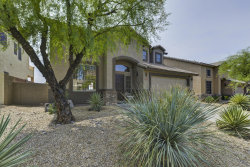 Photo of 4017 E Prickly Pear Trail, Phoenix, AZ 85050 (MLS # 6154375)