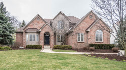 Photo of 794 Bogey Court, Ann Arbor, MI 48103 (MLS # 3255866)