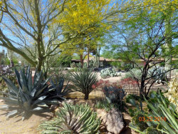 Photo of 6806 N Rocking Road N, Scottsdale, AZ 85250 (MLS # 5624640)