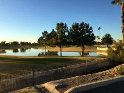 Photo of 2524 S El Paradiso Drive, Unit 63, Mesa, AZ 85202 (MLS # 5711906)