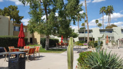 Photo of 4610 N 68th Street, Unit 438, Scottsdale, AZ 85251 (MLS # 5738680)