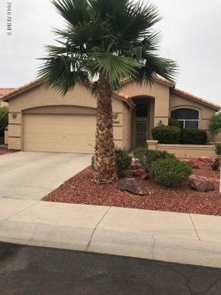 Photo of 19917 N 91st Lane, Peoria, AZ 85382 (MLS # 5766582)