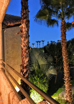 Photo of 10301 N 70th Street, Unit 216, Paradise Valley, AZ 85253 (MLS # 5851963)