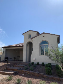 Photo of 11474 S 176th Drive, Goodyear, AZ 85338 (MLS # 5991528)