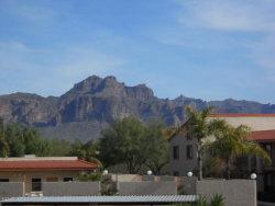 Photo of 1440 N Idaho Road, Unit 2095, Apache Junction, AZ 85119 (MLS # 6080559)
