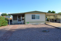 Photo of 8619 E Dewberry Avenue, Mesa, AZ 85208 (MLS # 6100370)