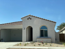 Photo of 9841 E Talon Avenue, Mesa, AZ 85212 (MLS # 6101160)
