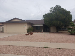 Photo of 12037 S Tomi Drive, Phoenix, AZ 85044 (MLS # 6136425)